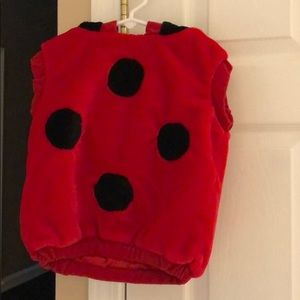 12-24 month lady bug costume